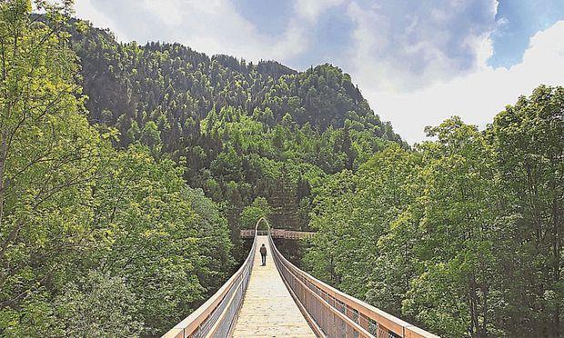 Der Baumkronenweg Ziegelwies in Füssen/Bayern in Deutschland wurde erst 2013 eröffnet. Er ist 21 Meter hoch und führt 480 Meter durch den Wald.