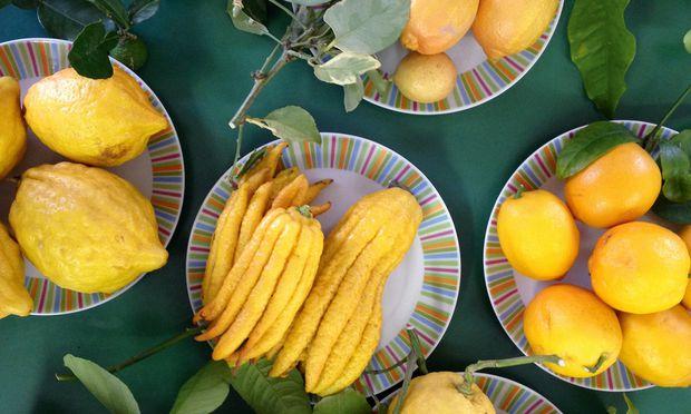 citrón orgie