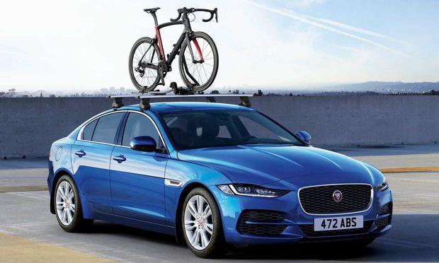 Entschlossener Blick, durchwegs hübsch anzusehen: Der XE soll für Jaguar in der Mittelklasse auf Beutefang gehen.