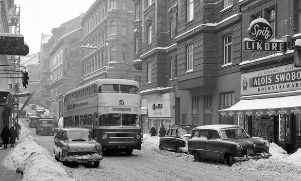Bus Linie 13