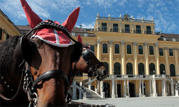 TOURISMUS Schoenbrunn trotzt Krise