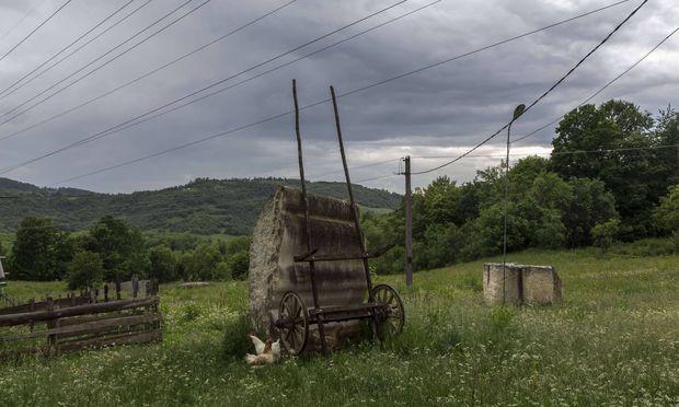 Die Landschaft, die Wildnis und das Landleben lockten Colin Shaw nach Rumänien.