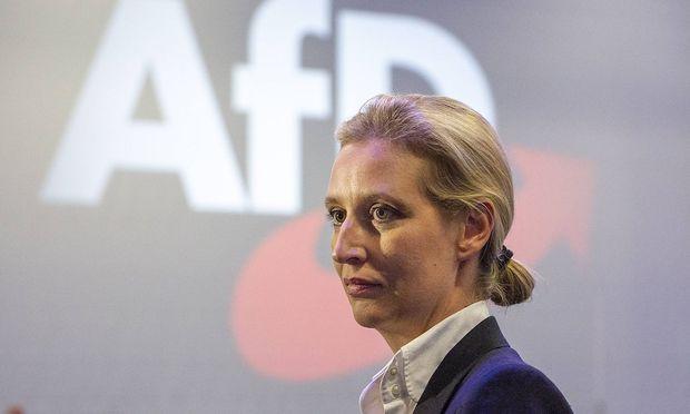 AfD steht offenbar vor Skandal um Großspende an Alice Weidel
