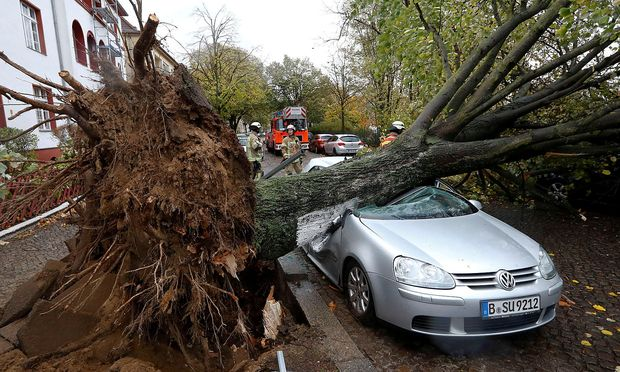 Firefighters are pictured next to a car damaged by a tree during stormy weather caused by a storm called ´Herwart´ in Berlin