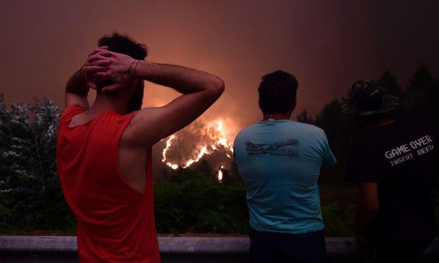 Bewohner der von den Bränden heimgesuchten Waldregionen Mittelportugals blicken auf das verheerende Feuer.
