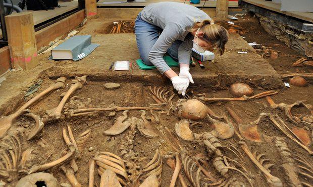 Eine Anthropologin untersucht Skelette aus dem Massengrab der Schlacht von Lützen (1632).