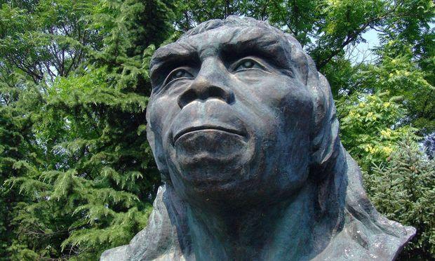 Wer zog noch vor Homo erectus los?