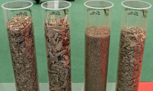 Papierindustrie, Waldbesitzer, Biomasse.