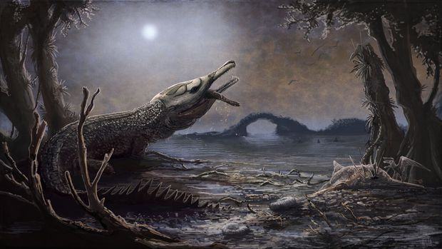 FRANCE-SCIENCE-PALAEONTOLOGY-CROCODILE