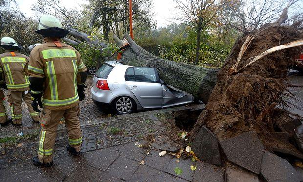 Im Berliner Bezirk Wedding wurde ein Auto von einem umstürzenden Baum getroffen. Sturm Herwart richtete in Norddeutschland schwere Schäden an, ehe er am Sonntag auf Österreich traf.