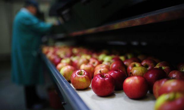 Apples are seen at RAJPOJ company, near Grojec