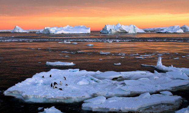 Vor allem vor den Küsten des Westens schmilzt das Eis. Das hebt indirekt die Meere, weil Gletscher ungebremster in sie gleiten.
