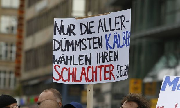 Germany Protest against Jews in the AfD A protester holds a sign that reads Only the most stupid ca