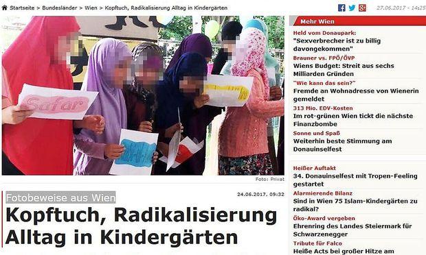 """Der Artikel erschien auch auf dem Onlineportal der """"Krone"""". – Screenshot"""