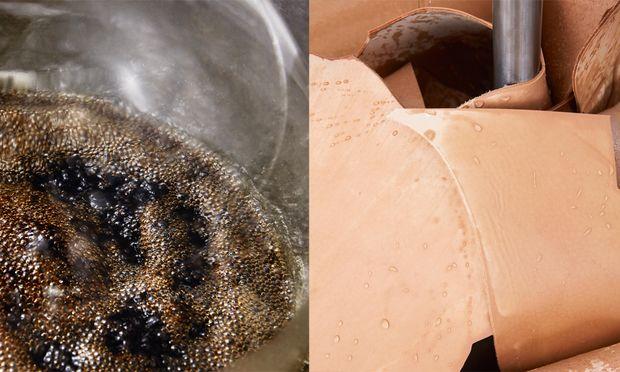 Innovativ. Für das Leder von Louis Vuitton wurde ein Extraktionsverfahren entwickelt.