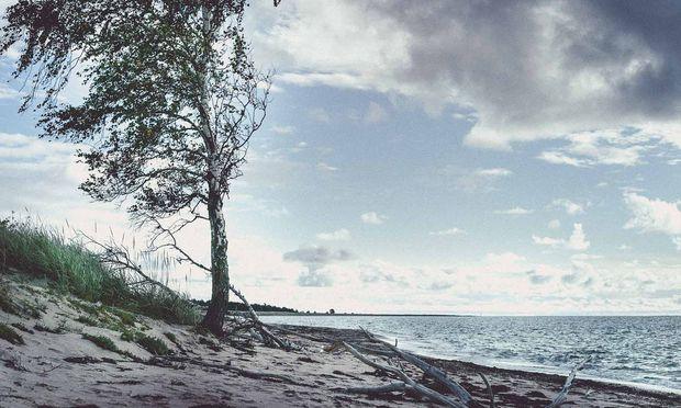 Einsamer Strang auf Saaremaa