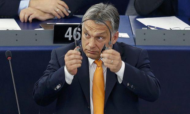 Viktor Orbán muss sich mit Vorwürfen gegen seinen Schwiegersohn auseinandersetzen.