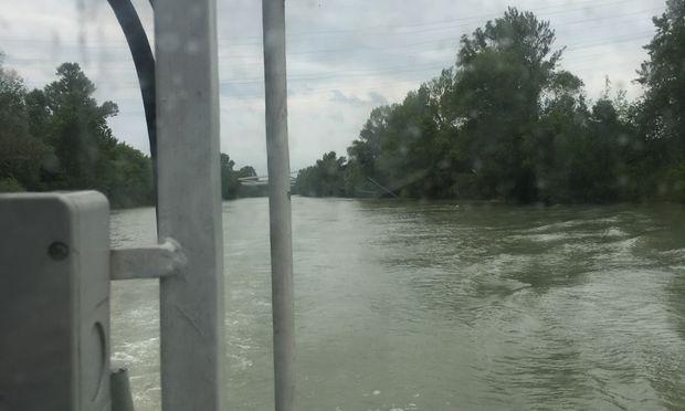 Wasserleichenfund im Donaukanal