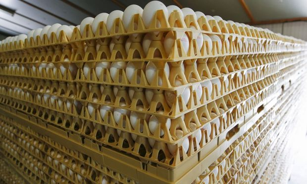 ALDI nimmt vorsorglich alle Eier aus dem Verkauf