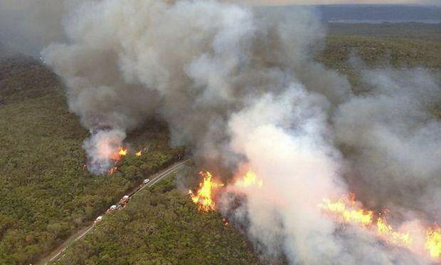 Buschbrand in der Lovett Bay nördlich von Sydney.