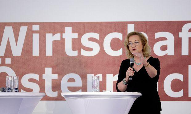 Am Mittwoch wurde in Wien der Wirtschaftsbericht 2013 der Bundesregierung vorgestellt.