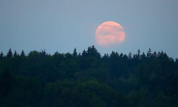So genossen Melanie Winiger und Co. die Mondfinsternis