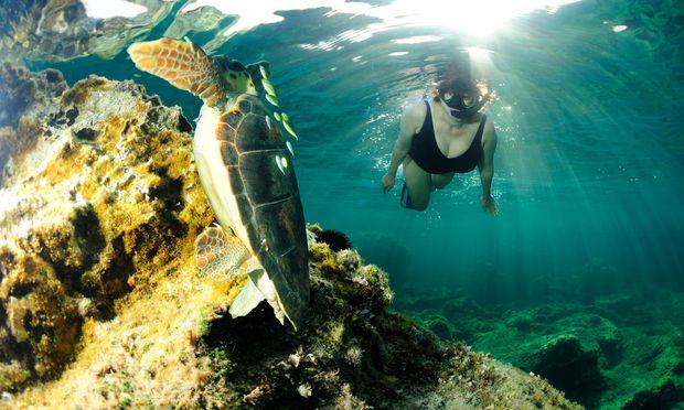 Tauchgang am ägäischen Meeresgrund
