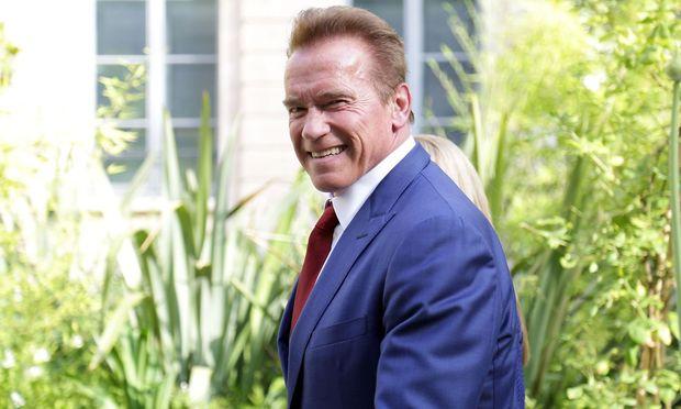 Schwarzenegger hat schon länger eine Fehde mit dem US-Präsidenten. / Bild: APA/AFP/ZAKARIA ABDELKAFI