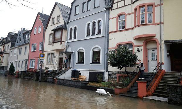 Die Mosel in Bernkastell-Kues ist nur einer von vielen Flüssen Deutschlands, die derzeit Wassermassen in die Städte bringen.