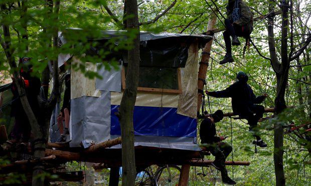 Ein besetztes Baumhaus.