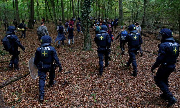Baumhäuser im Hambacher Forst: Seit Jahren wehren sich Umweltschützer so gegen die Rodung.