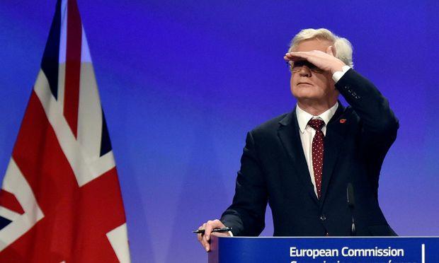 Umfrage zu Brexit: Mehrheit der Briten möchte erneut abstimmen