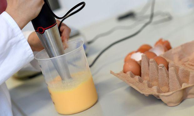 A laboratory technician checks eggs in a laboratory in Erlangen
