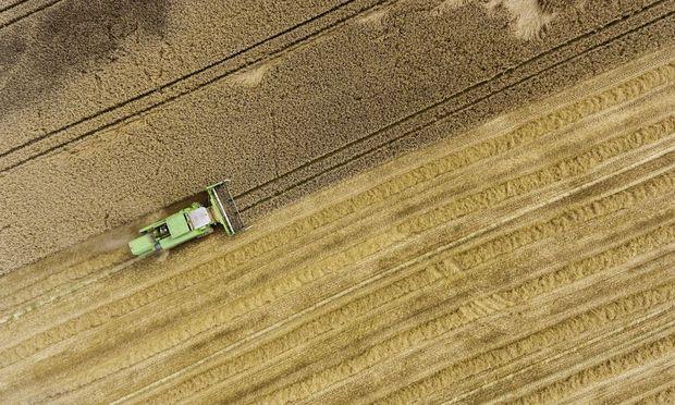 DEU Deutschland Laichingen 15 08 2017 Getreideernte auf der Schwaebische Alb Ein Maehdrescher b