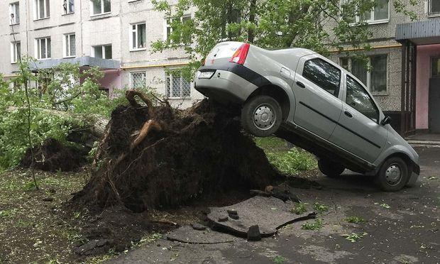 Mindestens elf Menschen in Moskau von Bäumen erschlagen