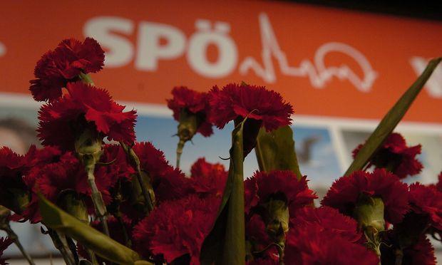 Die SPÖ startet eine Mitgliederbefragung
