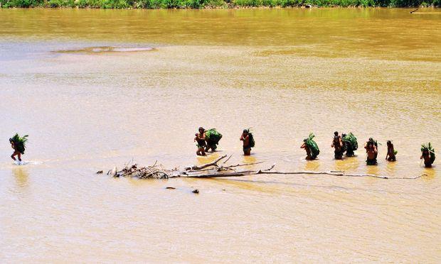 """Noch leben """"uncontacted people"""" auch im Amazonas-Regenwald. Doch Rohstoffjäger und Drogenschmuggler stören zusehends ihre Kreise."""