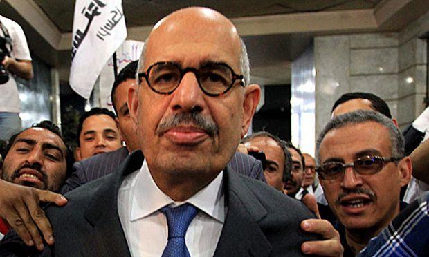 Friedensnobelpreistraeger ElBaradei gruendet Partei