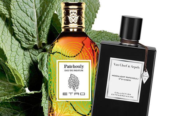 """Aufgeblättert. """"Patchouly"""" von Etro, 100ml Eau de Parfum um 130 Euro. """"Moonlight Patchouli"""" von Van Cleef & Arpels, 75ml Eau de Parfum um 130 Euro."""