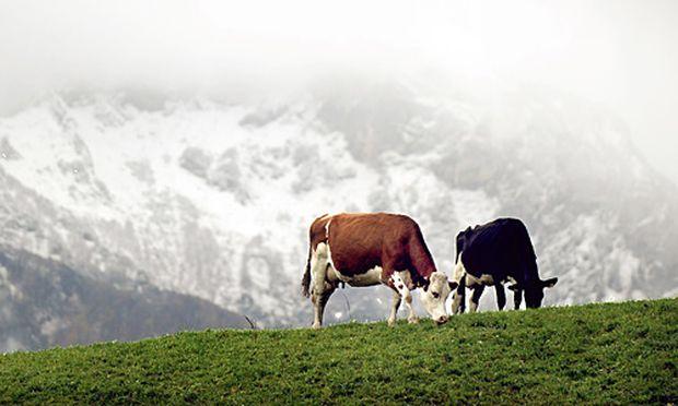 Wetterbilanz Oktober kuehl trocken