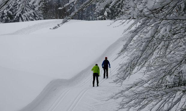 Mittlerweile liegt noch mehr Schnee, ja sogar zu viel.