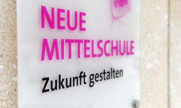 Steiermark oeVP will flaechendeckend