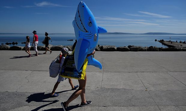 Keine Gefahr geht von diesem aufblasbaren Tier aus - von echten Haien übrigens auch kaum, vor allem in Europa.