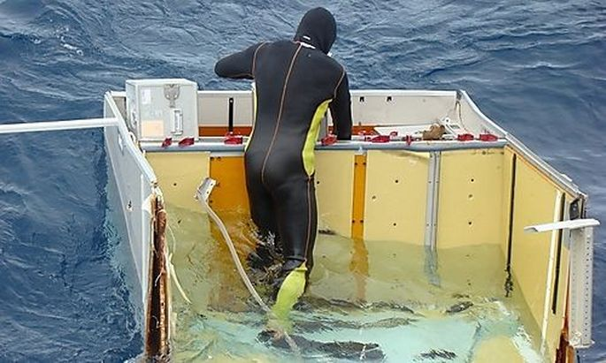 Brazilian Navy diver checks a piece of debris from Air France flight AF447 out of the Atlantic Ocean