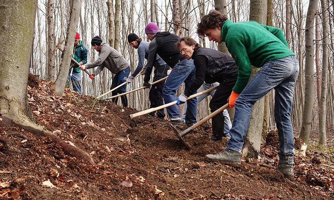 Frewillige des Vereins Wienerwald Trails beim Bau der Strecken