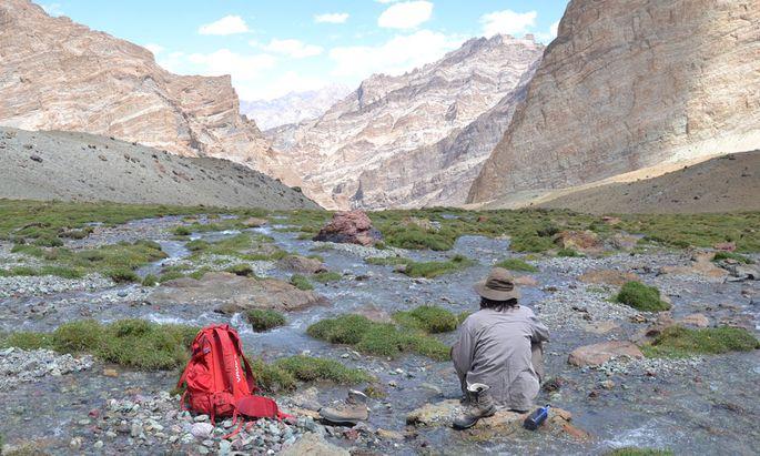 Wandern im Hochland von Ladakh