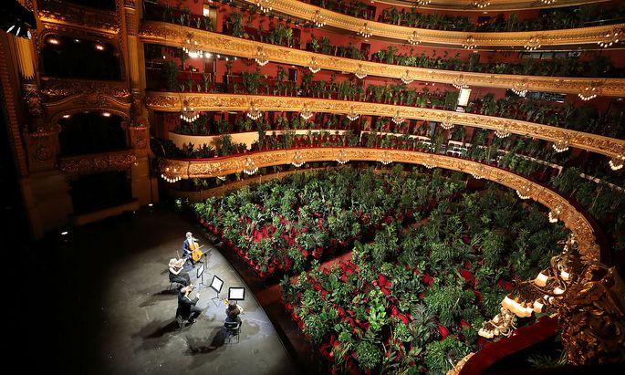 Hier im Bild (Oper von Barcelona) wurde nicht vor leeren Sitzplätzen gespielt, sondern vor Topfpflanzen.