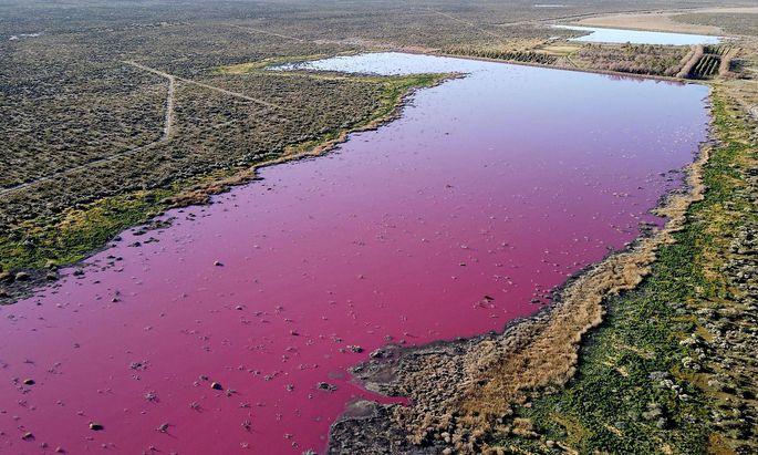Die Lagune Corfo präsentiert sich derzeit in unnatürlichem und eher ungesundem Pink.