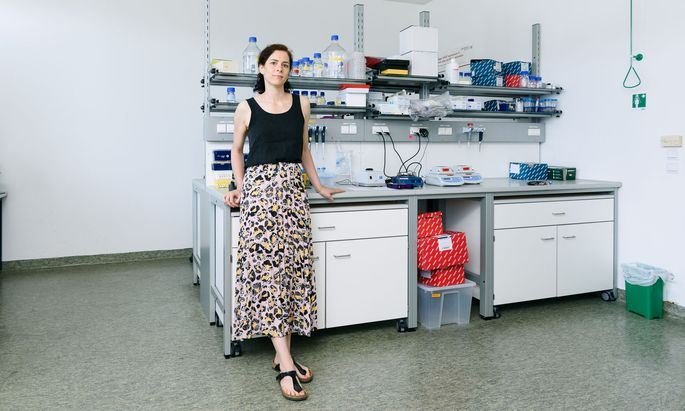 Karoline Kollmann beschäftigt sich mit CDK-Inhibitoren, einer relativ neuen Gruppe von Arzneistoffen zur Behandlung von Krebserkrankungen.