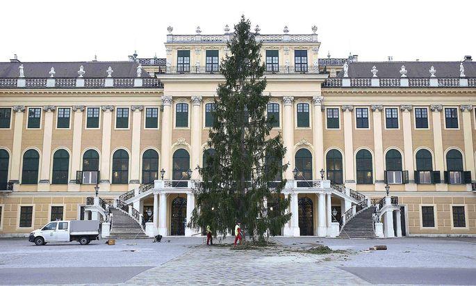 Bereits Ende Oktober wurde der Weihnachtsbaum vor dem Schloss Schönbrunn aufgestellt, nun steht die Eröffnung des Weihnachtsmarktes bevor.